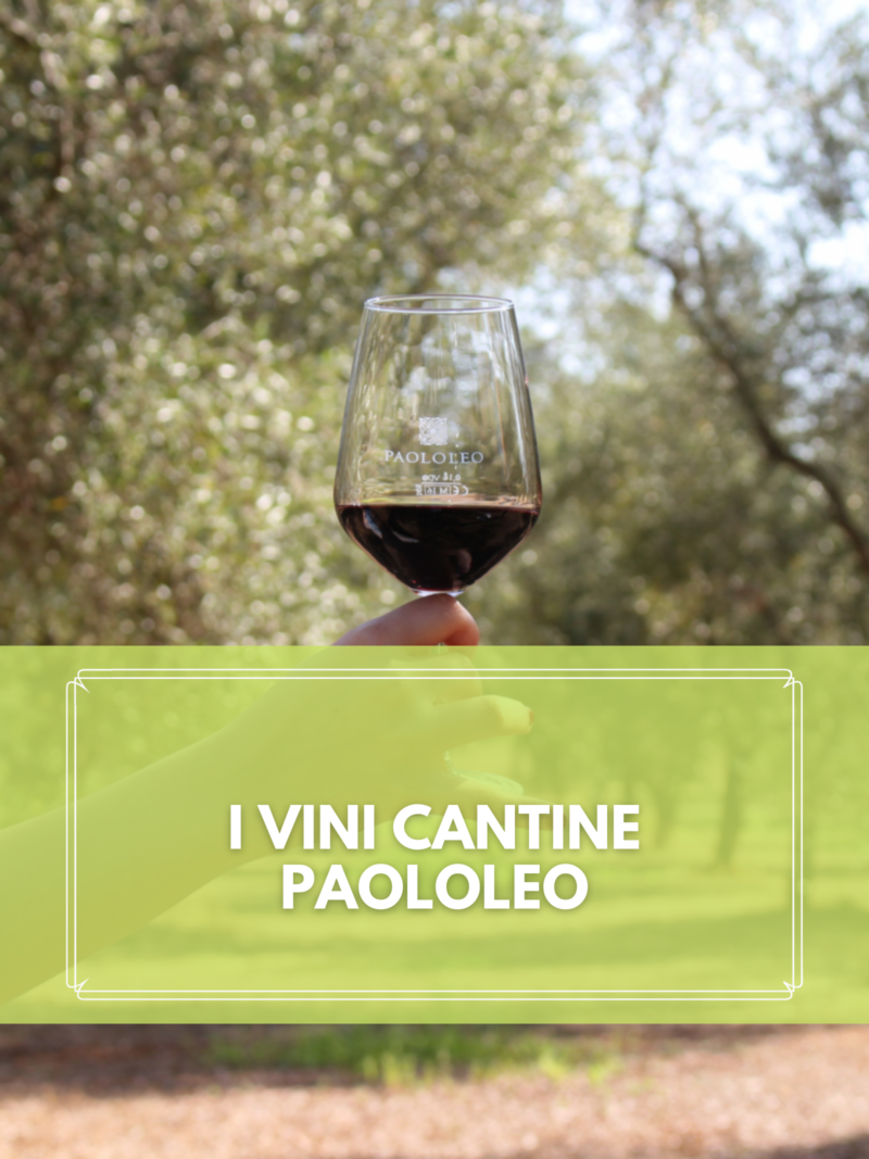 Cantine Paololeo Wines